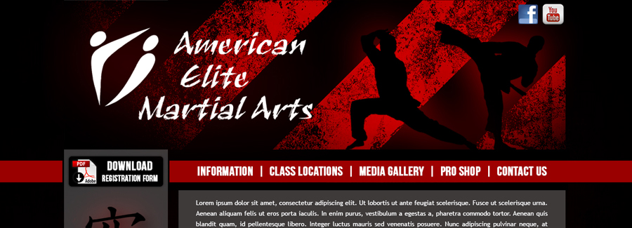 American Elite Martial Arts